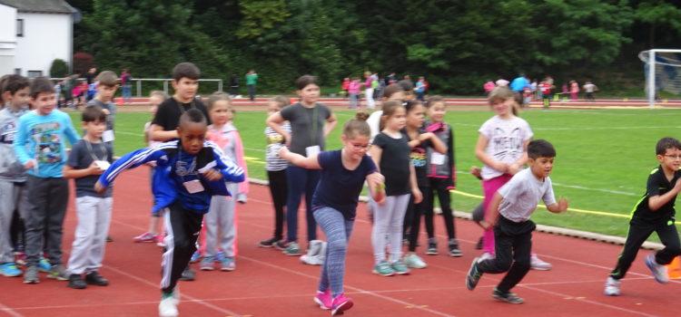 Sport in der Merheimer Heide
